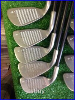 Golf Trends Pure Gold Iron Set 2-PW With Regular Graphite Shafts